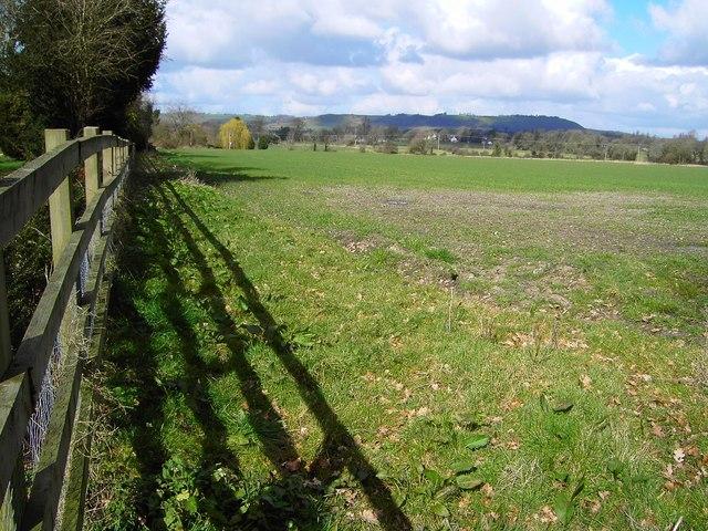 Field near Southcott, Wiltshire