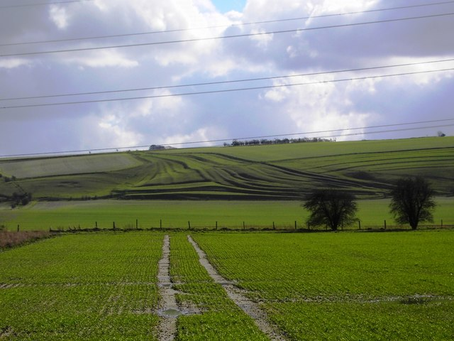 Pewsey Hill, south of Southcott, Wiltshire