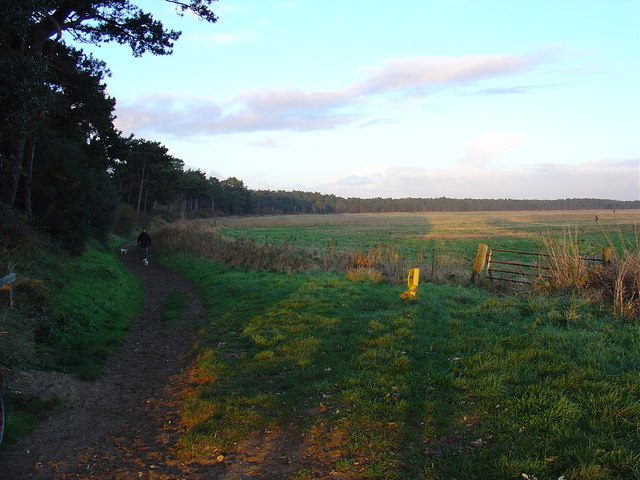 Footpath leading North East from Holkham car park