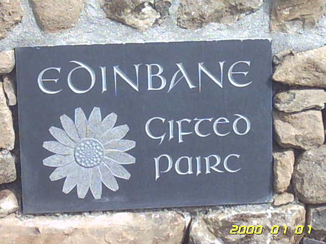 Our emblem... white daisy