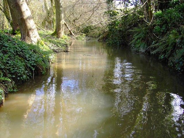 Deane Water, near Littleworth, Wiltshire