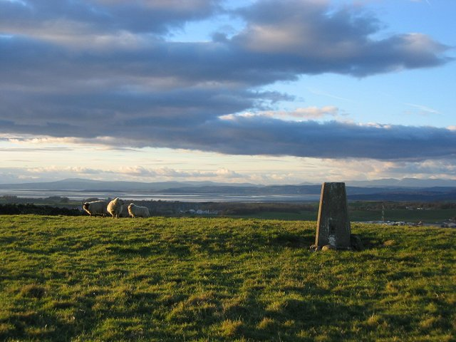 View Field trig pillar