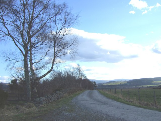 Road from Maryfield to Warren cottage