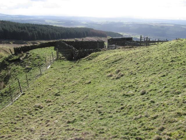Sheepfold below Saddle Hill