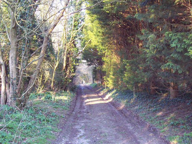 Byway to Chettle