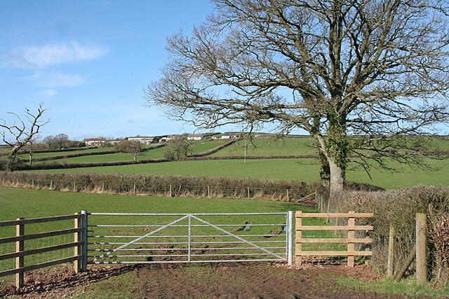 Morchard Bishop: towards Sharland Farm