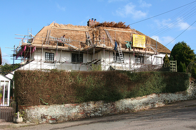 Morchard Bishop: thatching in progress