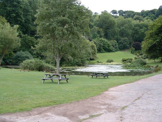 Duck pond Mount Edgcumbe