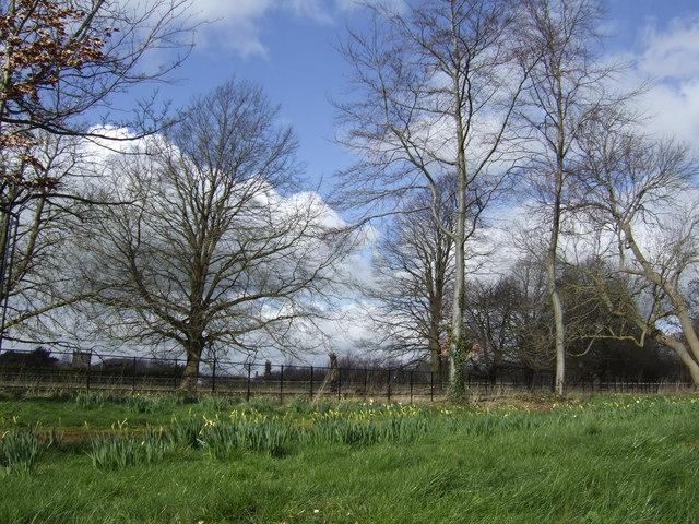 Early spring ; Stanton Fitzwarren