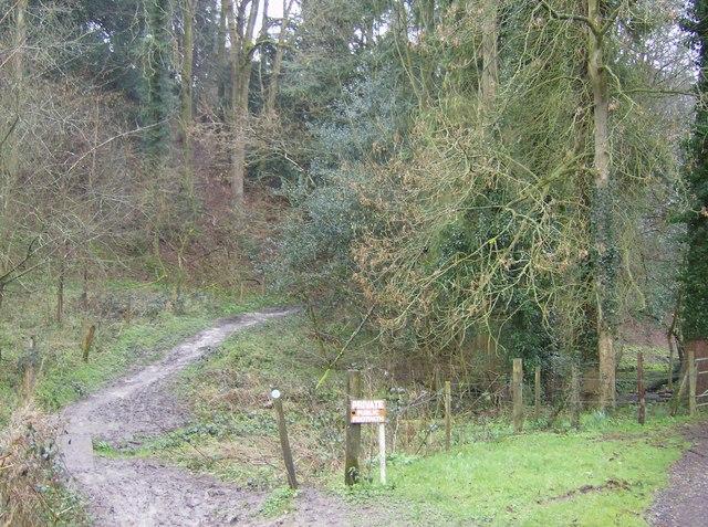 Footpath to Ashford Chace