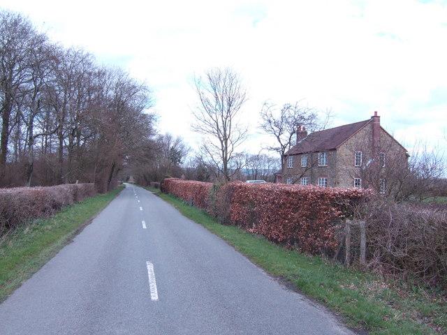 Bepton Road looking north