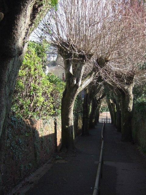Chelston path