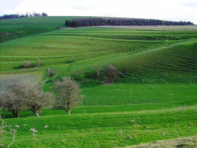 Field system south of Easton Royal, Wiltshire (1)