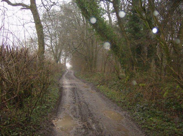 Track to Wheatham Hill