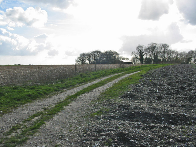 Track leading to Gurston Ashes