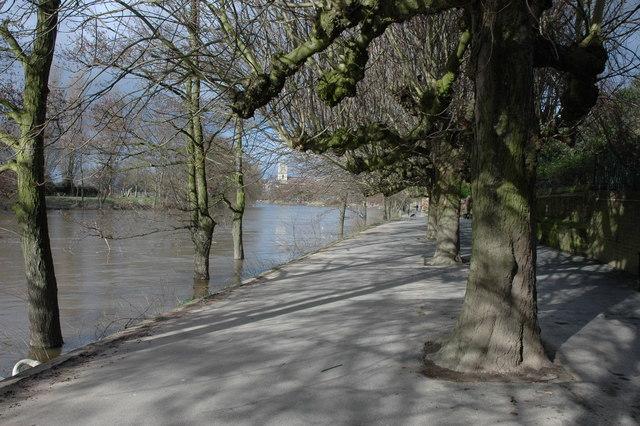 Kleve Walk, Worcester