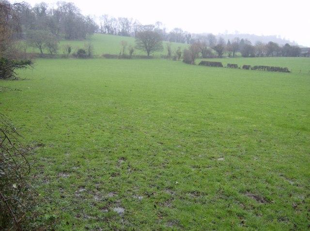Farmland near Vann Farm