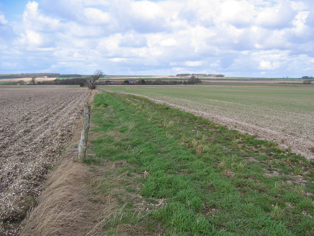 Low Farm Farmland