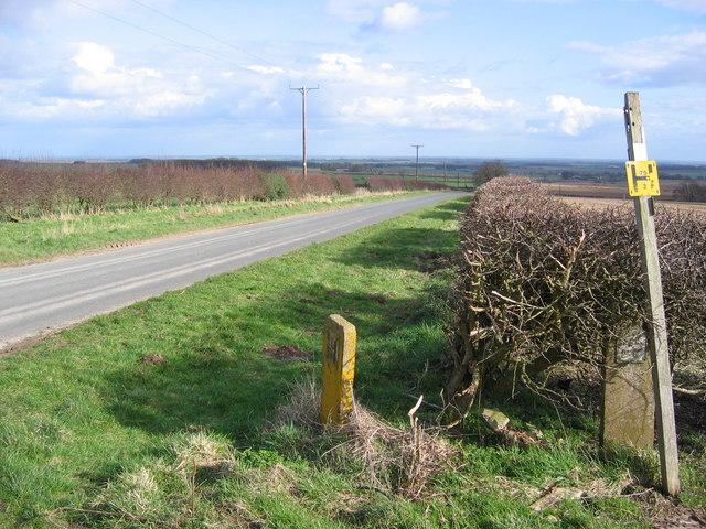 Road To North Dalton