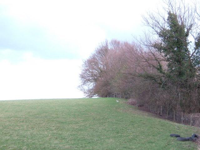 Chantler's Hill