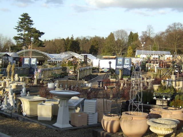 Outdoor plants and pots