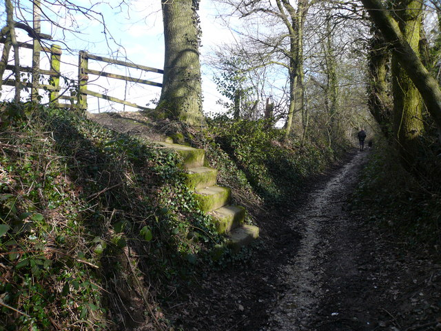 Steps leading to Footpath alongside Carr Plantation