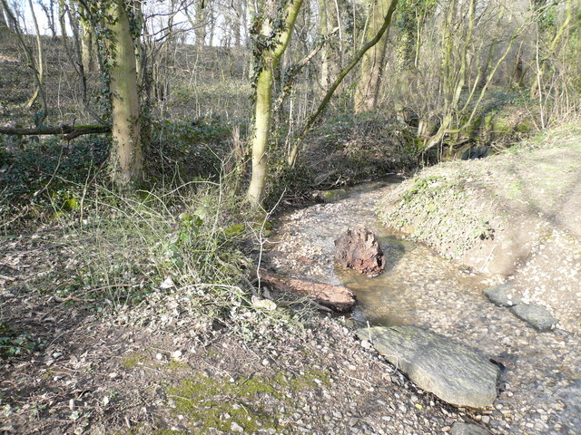 Woodland Stream crosses Footpath