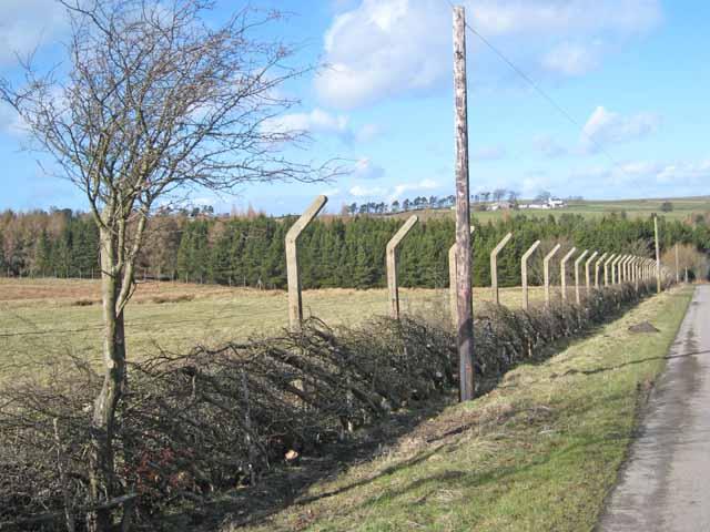 Wartime fence near Greenfield Farm