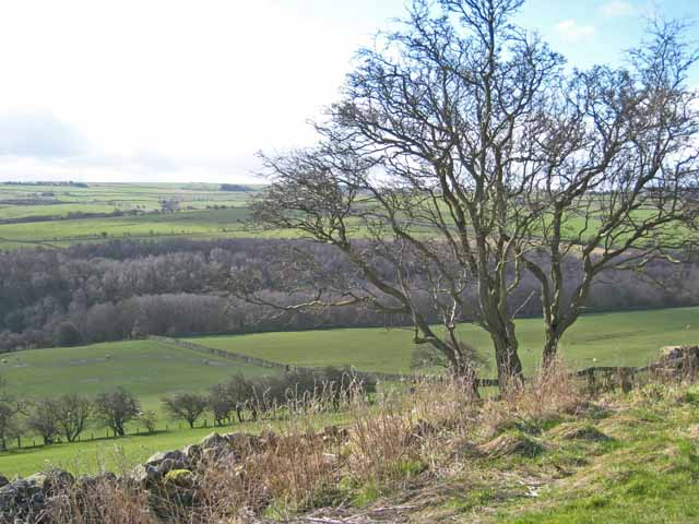 Upper Browney valley