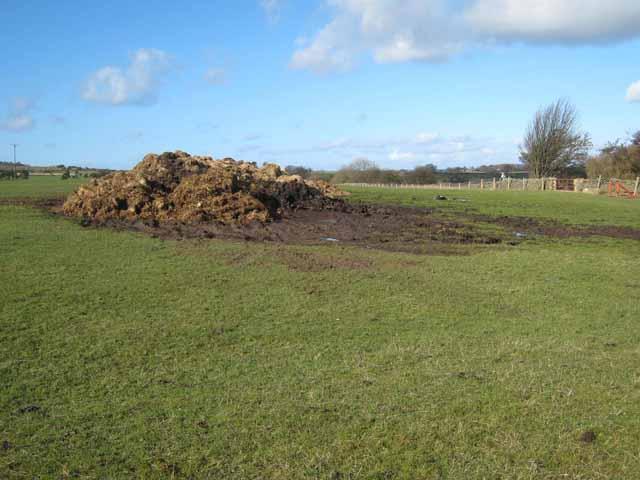 Muck heap at Pondfield Villa