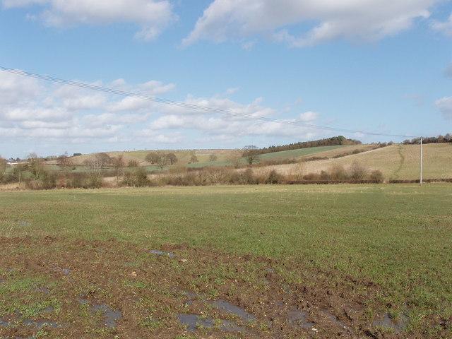 Field, view towards Bletchingdon