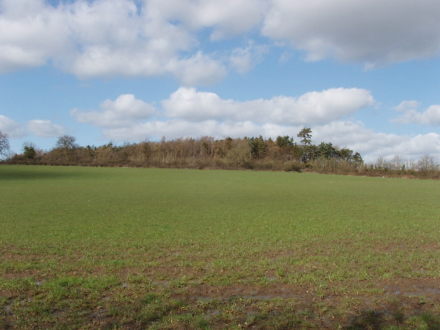 Knapp's Acre