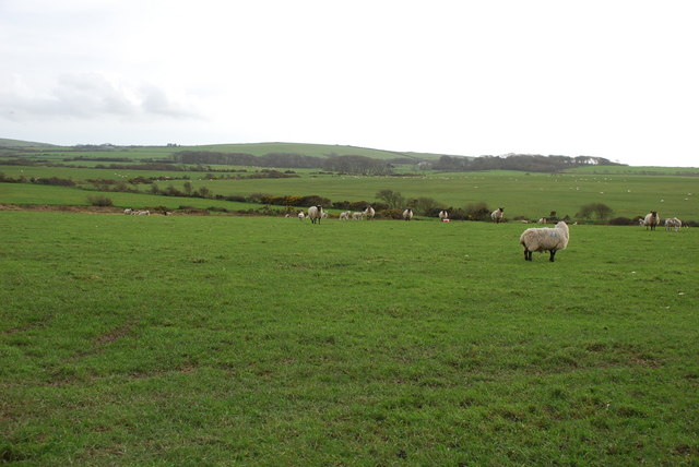 Farmland near Groesfordd