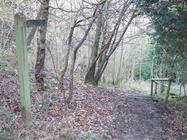 Footpath to Druids Grove