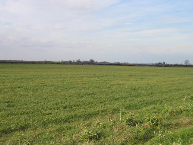 Field view towards Pilsgate and Windmill