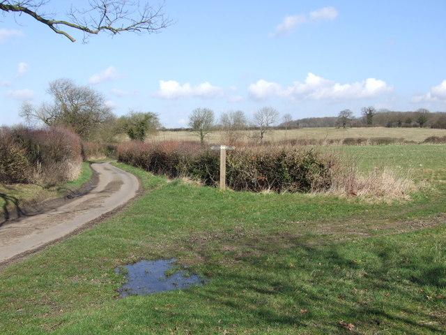 Footpath Crossing Country Lane