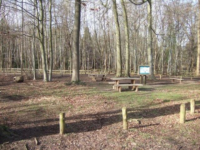 Norbury Park Picnic Area