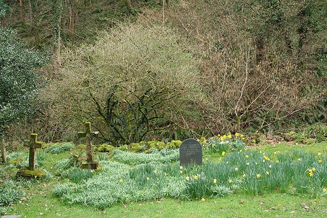 Oare: Culbone churchyard