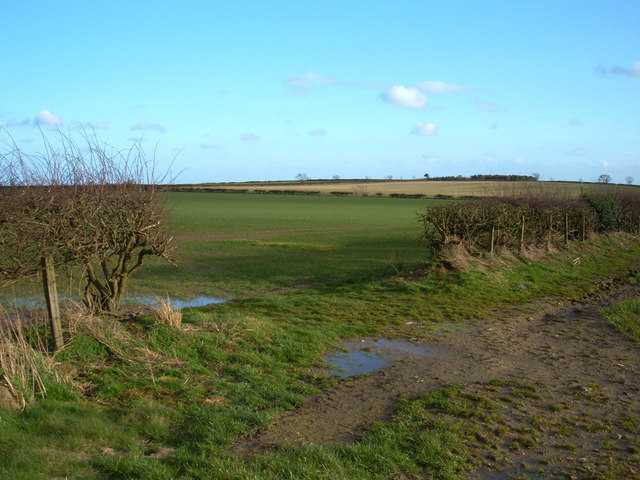 Farmland south of Middle Duddo