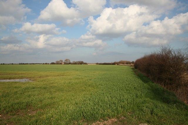 Farmland off Marsh Lane