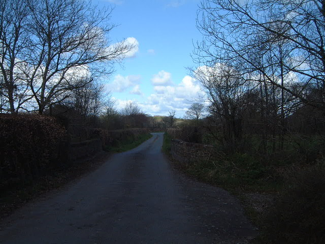 A Quiet Country Lane
