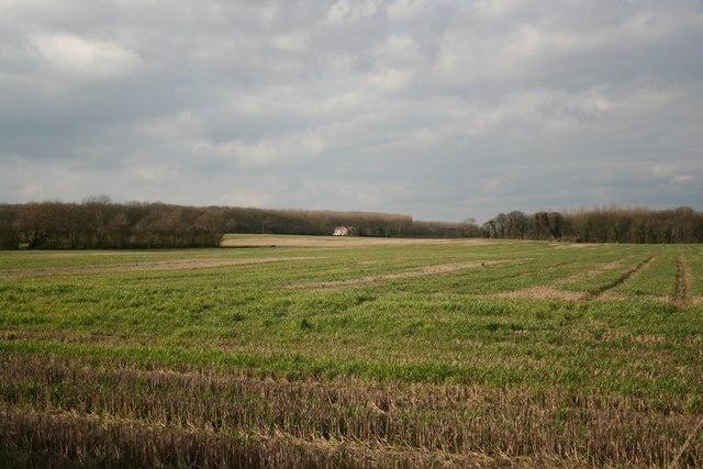 Farmland near Boothby