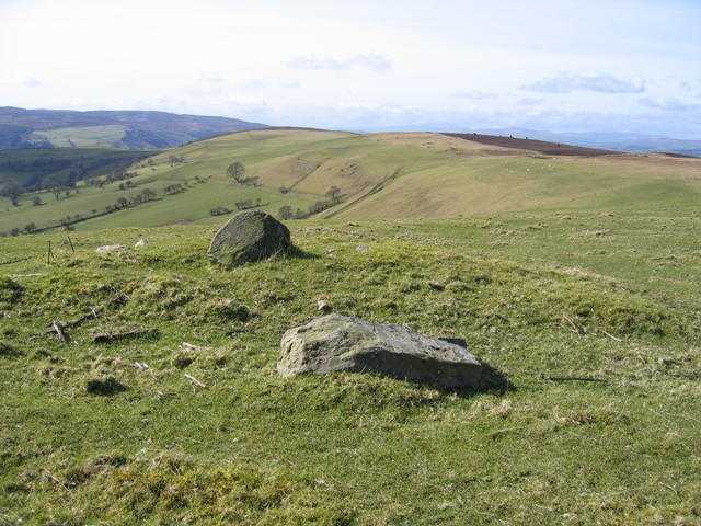 Bench Mark Rock and Pasture at Bwlch y Groes