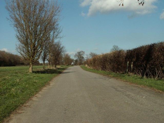 Wood Lane, looking north