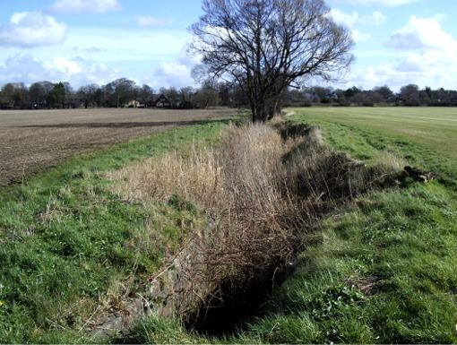 Drainage ditch, Aughton