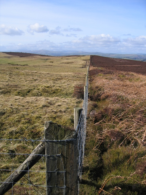 Parish Boundary and Fence Line at Bwlch y Groes