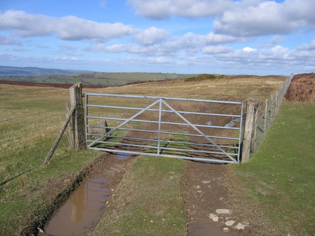 Field Gate at Bwlch y Groes