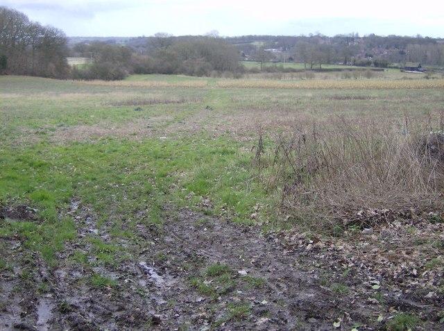 Path towards Bradfield