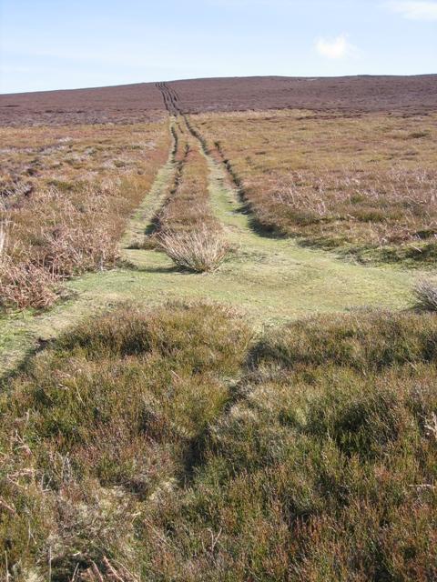 Landrover Track to Moel Morfydd