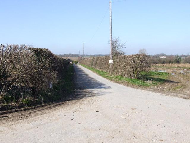 Track leading to Bush Farm, Hempnall